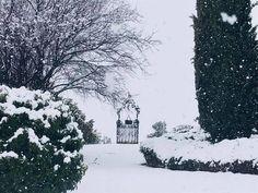 Regalos de la naturaleza. Hoy disfrutaremos de estas preciosas estampas en Blancazules. #Vidanazules www.villanazules.com