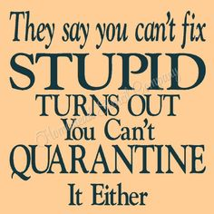 They say you can't fix stupid turns out your can't quarantine it either -Reusable Mylar Stencil, Sign Stencils Stupid Quotes, Funny Quotes, Empty Promises Quotes, Miracles Do Happen, Promise Quotes, Stencils For Wood Signs, He Has Risen, Cant Fix Stupid, Work Humor