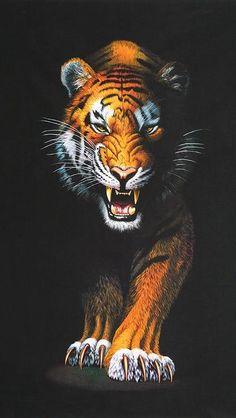 Animal Kingdom Tiger Panel (19870 286)