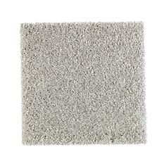 Carpet Sample - Whirlwind I - Color Navigator Texture 8 in. x 8 in.