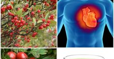 10 Herbs For Healthy Heart