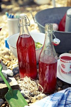 Redcurrant and raspberry cordial