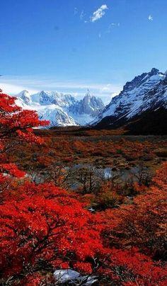 Je veux voyager à Patagonia, en Argentine parce que je veux voir les paysages très belle.