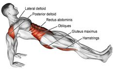 An isolation push exercise. Muscles worked: Gluteus Maximus Stabilizers: Erector Spinae Hamstrings Rectus Abdominis Obliques Posterior Deltoid and Lateral Deltoid. Muscles are exercised isometrically. Source by nabilrmz winter Fitness Workouts, Fitness Hacks, Yoga Fitness, At Home Workouts, Fitness Motivation, Health Fitness, Men Health, Cardio Gym, Workout Bauch