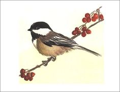 chickadee--tattoo idea! 8531 Santa Monica Blvd West Hollywood, CA 90069 - Call or stop by anytime. UPDATE: Now ANYONE can call our Drug and Drama Helpline Free at 310-855-9168.