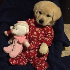 owww this cute little friend go to bed with her favorite stuffed