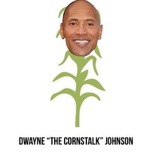 29 Best Dwayne The Rock Johnson Images Dwayne The Rock