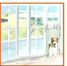 Patio Door With Pet Built In French Dog Glass Doggie Doors Lowes Fren