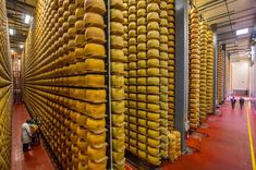 The world's largest cheese factory in Parma.