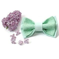 Perfect bow tie for mint wedding