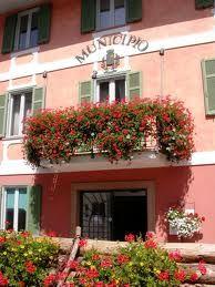 InfoPoint Dimaro - Val di Sole - Trentino - Italy