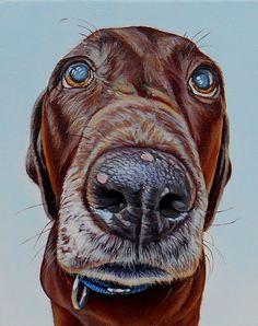 Realistic Funny Dog Portraits