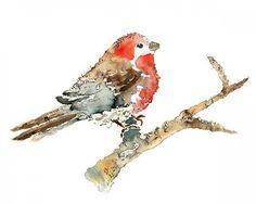 bird watercolor - Google Search