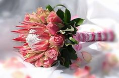 Protea and rose wedding bouquet.The King protea is the national flower of South Africa Protea Wedding, White Roses Wedding, Rose Wedding Bouquet, Floral Wedding, Ethnic Wedding, Bridal Bouquets, Protea Bouquet, Pink Bouquet, Protea Flower