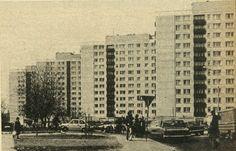Jelonki - Powojenny Modernizm