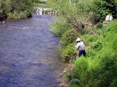 ¡Buen fin de semana de #pesca para tod@s! ¡Ojo! Si se nos olvida el #vadeador también podemos pescar, aunque mejor no olvidarlo, jajaja!!!! https://clicandfish.com/photo