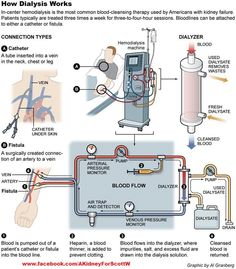 Memnes Reverse Osmosis Schematic Diagram on