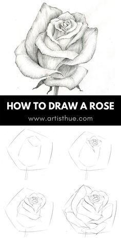 Rose Sketch, Flower Sketches, Art Drawings Sketches Simple, Pencil Art Drawings, Easy Drawings, Horse Drawings, Flower Art Drawing, Flower Drawing Tutorials, Floral Drawing