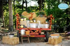 Could use one of Kirk's trailers and decorate it for a fall themed wedding! lol