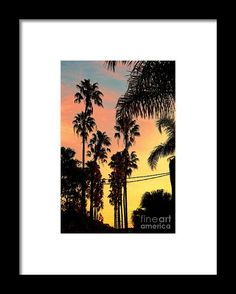 Photography Framed Print featuring the photograph Palm Sunset Silhouette 2 By Kaye Menner by Kaye Menner