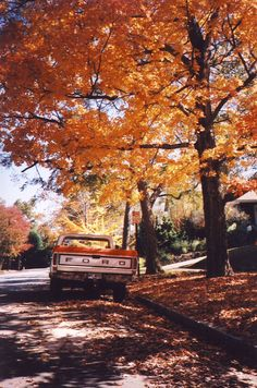 A vintage photo that seems to come from a simpler time - an old Ford rests under splendid orange and red autumn trees.