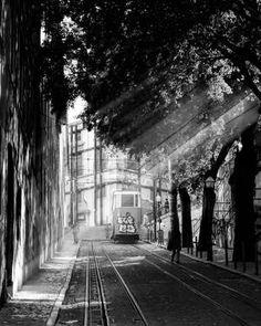 "Serge Horta; Photography, ""Bairro Alto"""