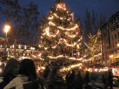 Sapin - Marché de Noel de Budapest