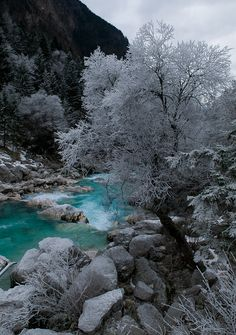 Frost.. Such wonderful pictures my God paint's for all His creation to enjoy..