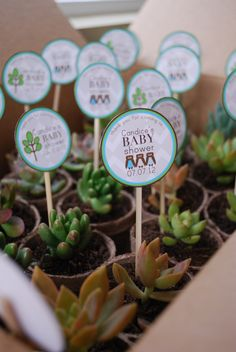 44 Ideas For Baby Shower Prizes Succulent Baby Shower Return Gifts, Distintivos Baby Shower, Best Baby Shower Favors, Baby Shower Souvenirs, Fiesta Baby Shower, Baby Shower Prizes, Baby Shower Cards, Baby Shower Themes, Baby Shower Gifts