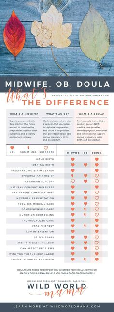 Wild World Mama - Midwife, OB, Doula. What's the Difference Infographic Med School, Certified Nurse Midwife, Doula Training, Student Midwife, Doula Business, Hospital Birth, Birth Doula, Childbirth Education, Natural Birth