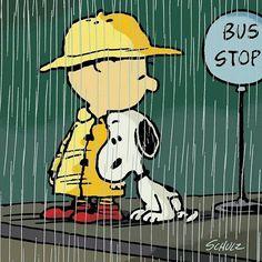 Huddled in the rain...