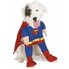 Your dog valiantly defends your home, but if given the chance he would jump at the opportunity to fight crime in the streets! Now you can dress your dog up like the super hero he wishes to be with these super hero dog costumes – available in many different styles.