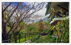 Hotel in Palampur | Hotel in Dharamshala | Resorts in Dharamshala: NORWOOD Hotel in Palampur - Dharamshala
