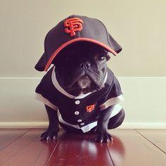 pug life  Pugfanatic.com