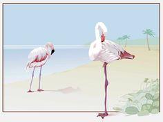 Flamingo Vector free