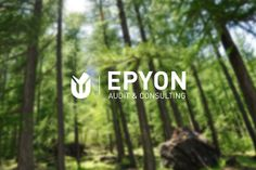 Epyon audit & consulting