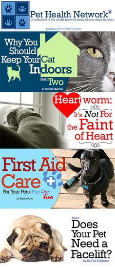 is dedicated to the health and well-being of your dogs and cats. check out pethealthnetwork.com