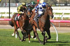 Throssell too good in ANZAC Day Stakes : Australia Horse Breeding and Racing news updated daily, www.thoroughbrednews.com.au