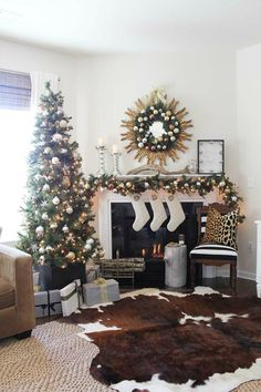 Christmas Tree Roundup 7
