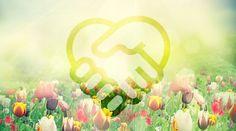 RiseEarth : The Healing Power of Forgiveness
