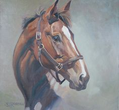 Equine portraits available on etsy