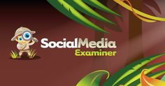 Highlighted tutorials and news from Social Media Examiner about search engine optimization