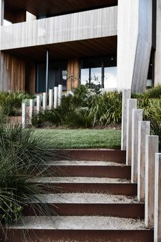 The Club House Sorrento by Wolveridge Architcts - Local Design & Interior - The Local Project Courtyard Landscaping, Modern Landscaping, Australian Architecture, Residential Architecture, Landscape Solutions, Landscape And Urbanism, Landscape Designs, Australian Beach, Coastal Gardens