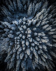 Winter wonderland after a snow storm – Washington State Source by urbanmenagerie Storm Photography, Winter Photography, Outdoor Photography, Nature Photography, Photography Tips, Landscape Artwork, Cool Landscapes, Beautiful Landscapes, Beautiful Scenery