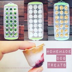Homemade Dog Treats   ☝place a blueberry at the bottom of each ice cube spot ✌fill each spot 3/4 with coconut oil (microwave for 30 seconds - it's much easier when melted) a little dollop of PB (all natural) at the top  Freeze  Pop them out for a nice refreshing, HELTHY, treat for your puppy!  Dogs LOVE pb, blueberries are a great source of antioxidants, and coconut oil is WONDERFUL for their skin and for a shiny coat!