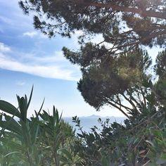via Garanace Dore #Corsica