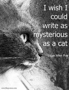Edgar Allen Poe quote, cat