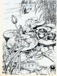 Frog and pond with butterfly and dragon fly template