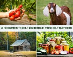 50 Resources To Help You Become More Self-Sufficient