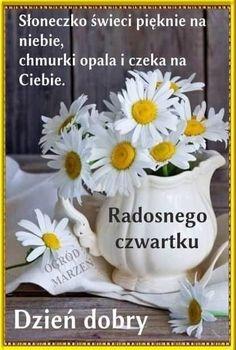 Good Morning, Humor, Plants, Opal, Polish Sayings, Photo Illustration, Art, Good Day, Buen Dia